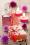 Handmade herbal soap stock image