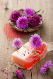 Handmade herbal soap Stock Photography