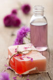 Handmade herbal soap Stock Images
