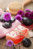 Handmade herbal soap Royalty Free Stock Photography