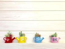 Handmade kaktus Zdjęcie Royalty Free