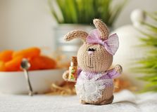 Handmade knitted rabbit. Easter Bunny pastry in a white apron holding in her paws bottle with decorations for the cake stock photo