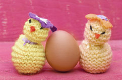 Handmade knitted woollen Easter chicks with real egg on pink woo Stock Image