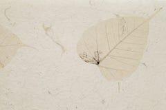 Handmade leaf paper stock image