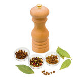 Handmade mill for spices, dried bay leaf, clove and pepper Stock Photography
