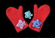 handmade mittens Стоковая Фотография