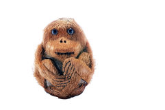 Handmade monkey from dried coconut Stock Images