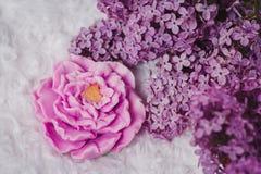 Handmade mydło tworzący jak wzrastał Obraz Royalty Free