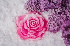 Handmade mydło tworzący jak wzrastał Zdjęcia Royalty Free
