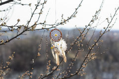 Handmade native american dream catcher  Stock Images