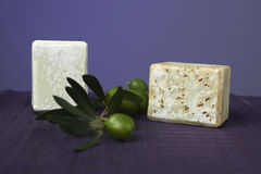 Handmade olive soap with olive branch. Stock Images