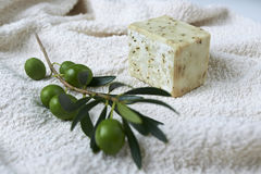 Handmade olive soap with olive branch and a towel. Royalty Free Stock Image