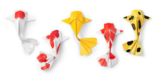 Handmade paper craft origami koi carp fish on white background. Royalty Free Stock Images