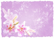 Handmade paper with flowers Stock Photo