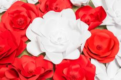 Handmade paper flowers on interior Stock Photography