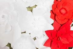 Handmade paper flowers on interior Royalty Free Stock Photo