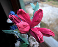 Handmade paper flowers in the small village near Novi Sad in Serbia. Handmade paper flowers placed near the window that overlooks the small village near Novi Sad Royalty Free Stock Images