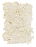 Handmade paper with leaves and flowers inside Stock Photo