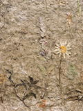 Handmade paper with natural flowers Royalty Free Stock Photos