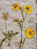 Handmade paper with natural flowers Royalty Free Stock Image