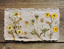 Handmade paper with natural flowers Stock Photos