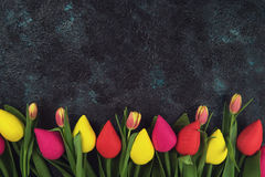 Handmade and real tulips on darken. Concrete background for Mother`s Day, spring time or Easter theme Royalty Free Stock Photo