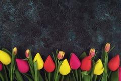 Handmade and real tulips on darken Royalty Free Stock Photo