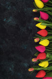 Handmade and real tulips on darken Stock Images