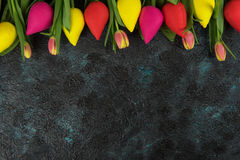 Handmade and real tulips on darken Royalty Free Stock Image