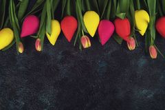 Handmade and real tulips on darken. Concrete background for Mother`s Day, spring time or Easter theme Stock Photos