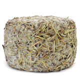 Handmade rosemary-coated cheese from Spain Stock Images