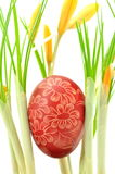 Handmade scratched Easter egg among crocus flowers Stock Photo
