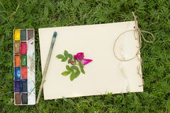 Handmade sketchbook with flowers and leaves of wild rose. Watercolor paints and brush on the background of grass Stock Photos