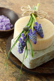 Handmade soap and bath salt Stock Images