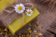Handmade soap with chamomile Stock Photography