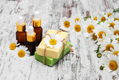Handmade soap and chamomile Stock Images