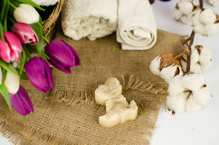 Handmade soap Stock Photography