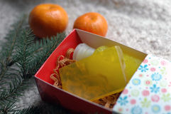 Handmade soap and shampoo in the gift box. The handmade soap and shampoo in the gift box Stock Image