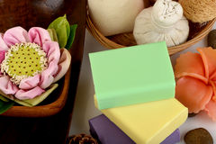 Handmade soaps with herbs. Royalty Free Stock Images