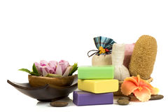 Handmade soaps with herbs. Royalty Free Stock Photo