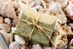 Handmade spa olive oils and dried herbs soap on seashells backgr Royalty Free Stock Photography
