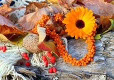 Handmade szklanych koralików kolia (bransoletka) Obrazy Royalty Free