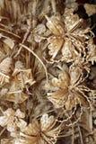 Handmade - tecelagem da palha Imagem de Stock Royalty Free