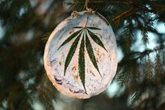 Cannabis leaf in the bird`s beak. Cannabis marijuana new year entertainment. Handmade toy on the Christmas tree. leaf in the bird`s beak. Cannabis marijuana new royalty free stock image
