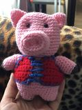 Handmade toy pink knitted pig in red gall. Hand-made pink knitted pig toy in the red gall in the palm of your hand royalty free stock photos