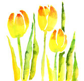 Handmade tulip Royalty Free Stock Photography