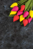 Handmade tulips on darken. Concrete background for Mother`s Day, spring time or Easter theme Royalty Free Stock Photo