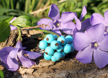 Handmade turquoise ring on the nature background Royalty Free Stock Image