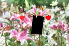 Handmade wood hearts hanging on cloth line. Handmade two wood hearts hanging and card on cloth line or Stock Image