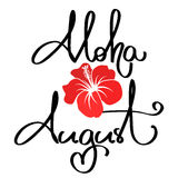 Handmade vector calligraphy and text aloha summer Stock Image